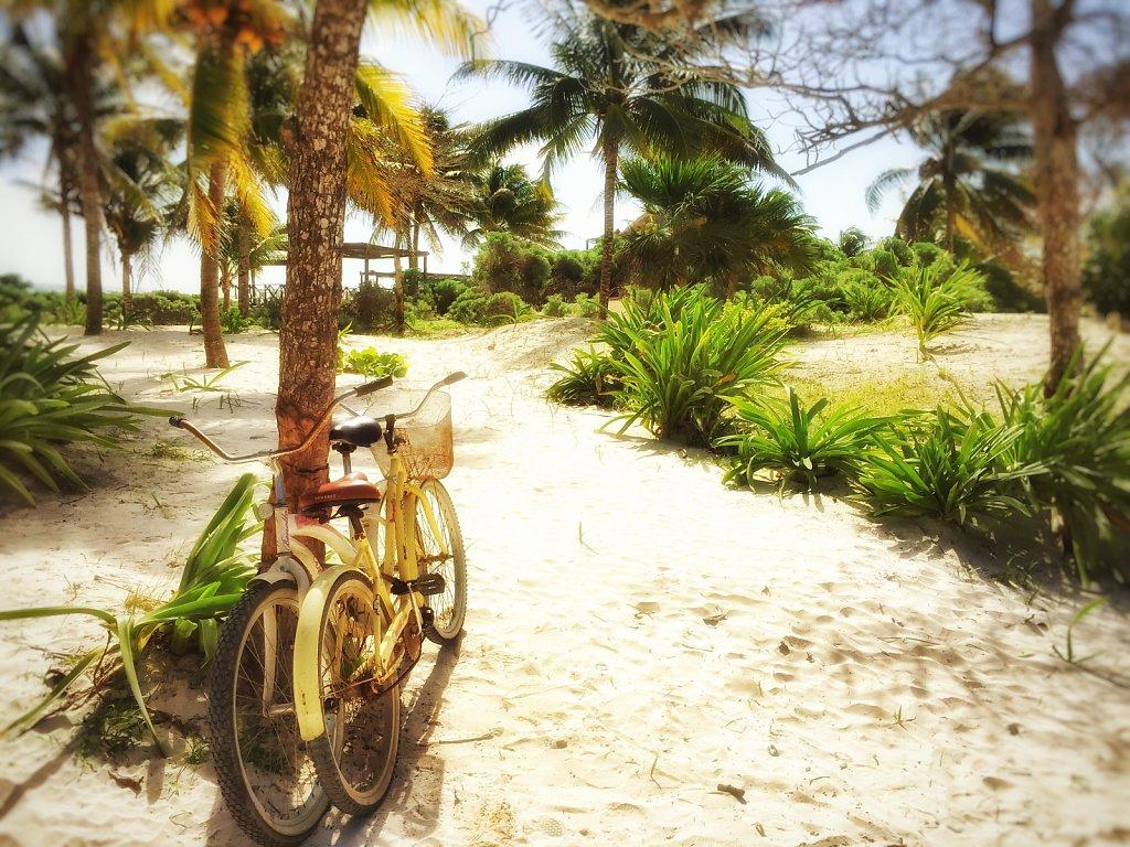 Mexiko / Yucatan